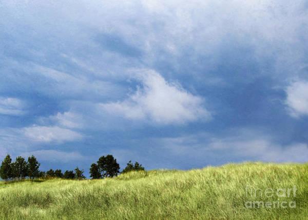 Storm Over Grassy Dune Poster