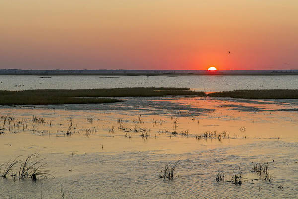 Poster featuring the photograph Sunset At Cheyenne Bottoms by Rob Graham