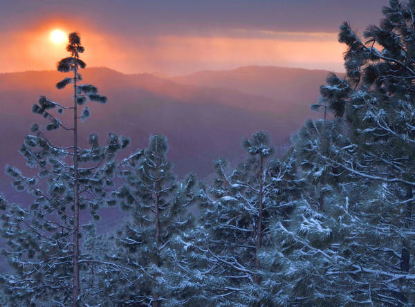 Winter Sunset - Kings Canyon Poster