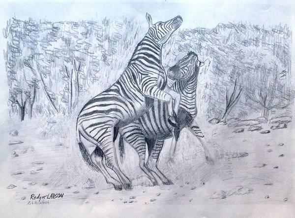 Zebra Romp Poster