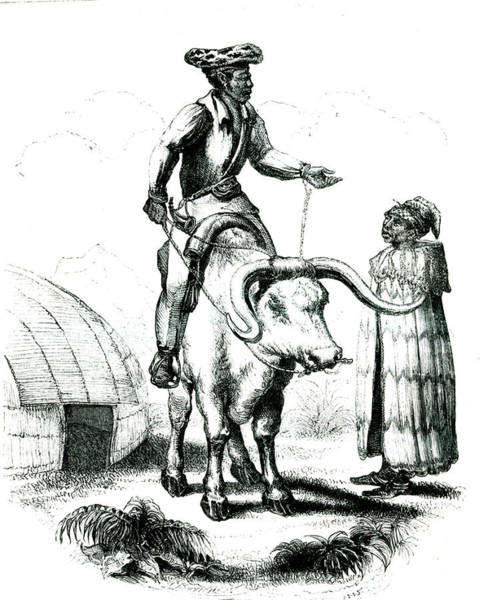 19th Century Cafres People Poster