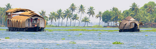 Asia, India, Kerala (backwaters Poster