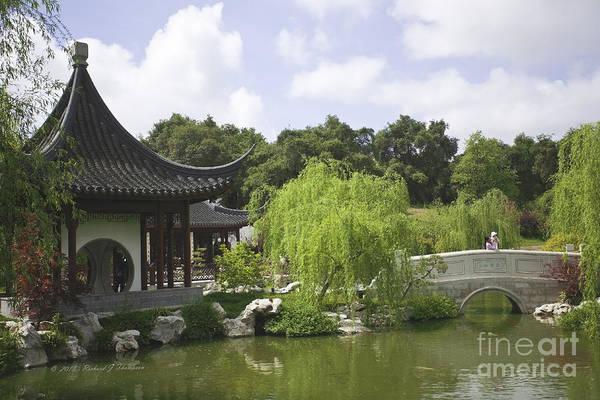 Chinese Water Garden Poster