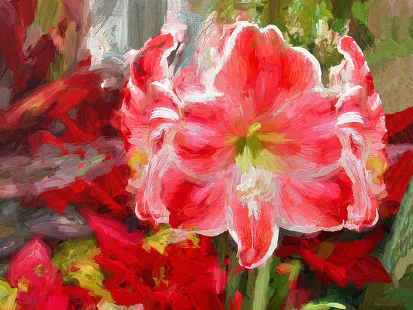 Christmas Lilies Poster