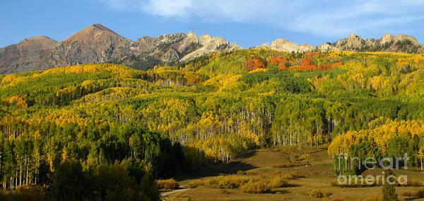 Colorado's Fall Spectrum Poster