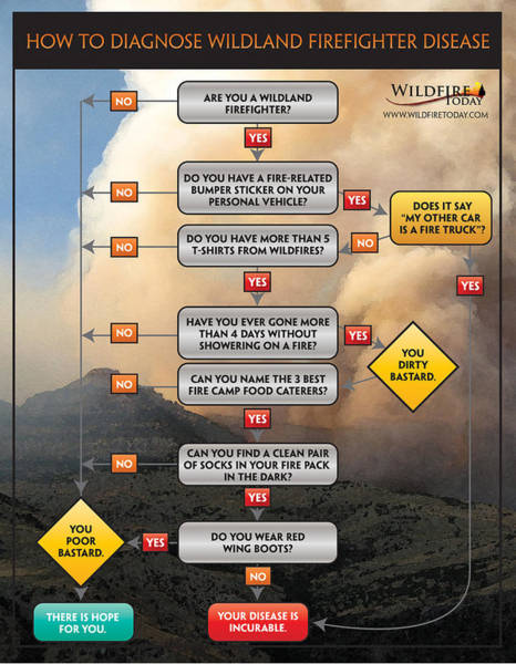 Diagnosing Wildland Firefighter Disease Poster