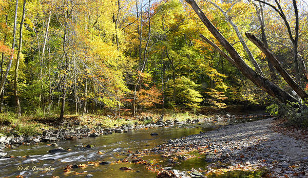 Philadelphia Landmark Pennypack Creek In Autumn Poster