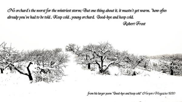 Robert Frost Poems Posters | Fine Art America
