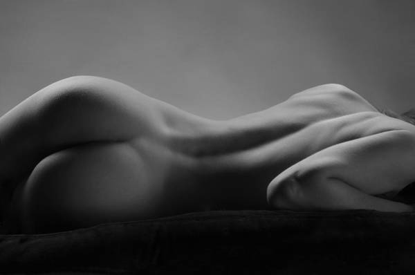 2533 Avonelle Bw Nude Back  Poster