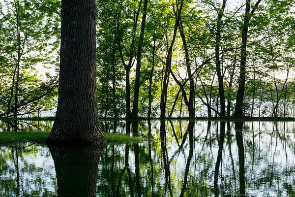 Lake Nokomis In A Wet Spring Poster