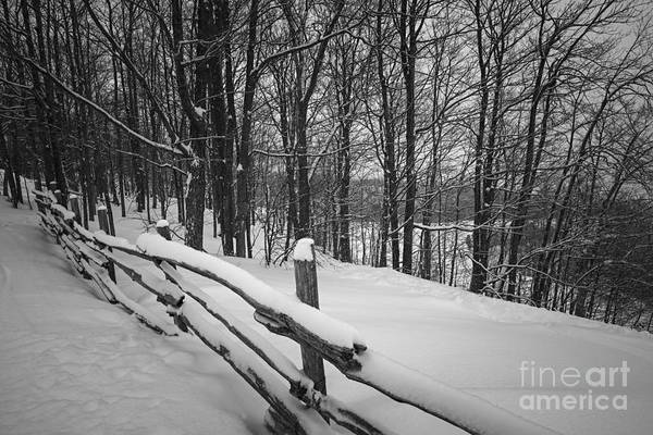 Rural Winter Scene With Fence Poster