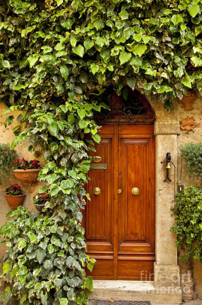 Poster featuring the photograph Tuscan Door by Brian Jannsen