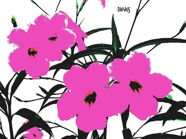 4 Violet Jack Flowers Poster