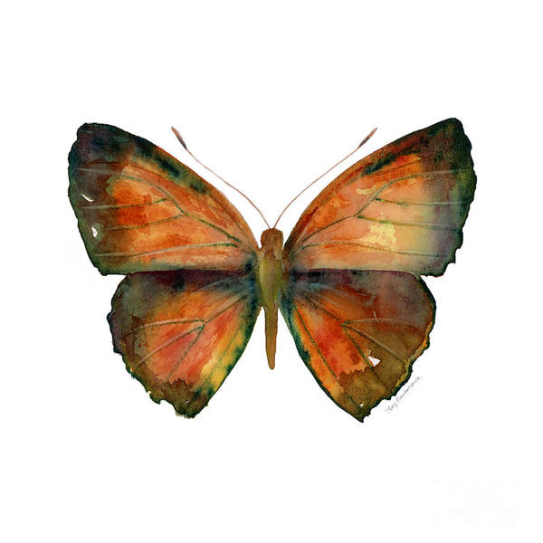 56 Copper Jewel Butterfly Poster