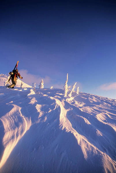 A Backcountry Skier Hikes Poster