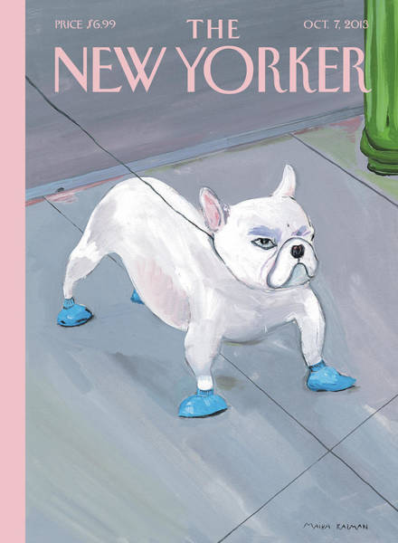 A Dog Wears Shoes On The City Sidewalk Poster