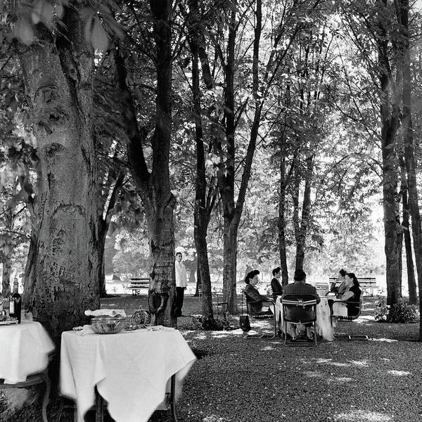 A Group Of People Eating Lunch Under Trees Poster