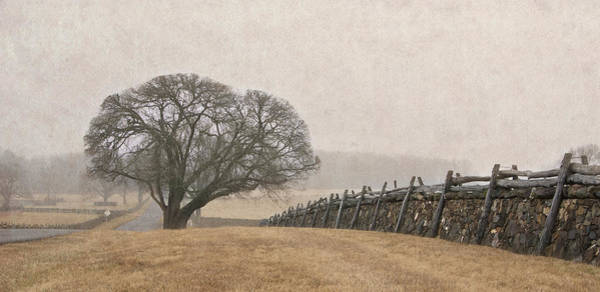 A Misty Morning In Horse Country Poster
