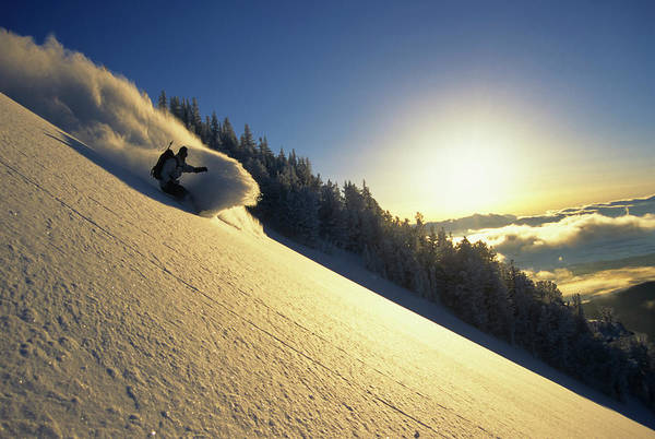 A Snowboarder Carves A Turn In Fresh Poster