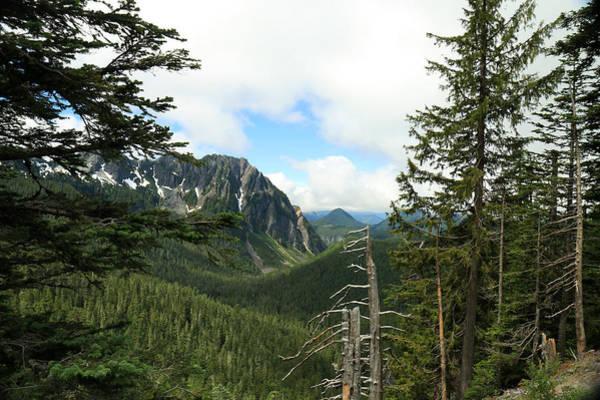 A Vista - Mt. Rainier National Park Poster