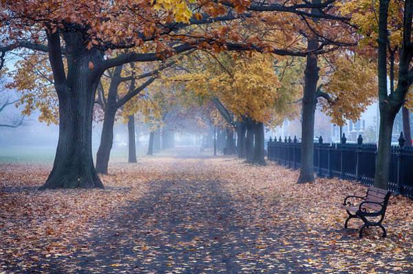 A Walk In Salem Fog Poster