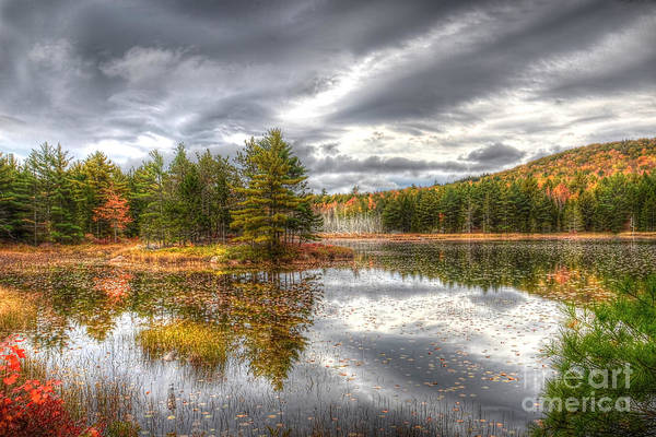 Acadia With Autumn Colors Poster
