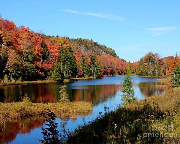 Adirondack Splendor Poster
