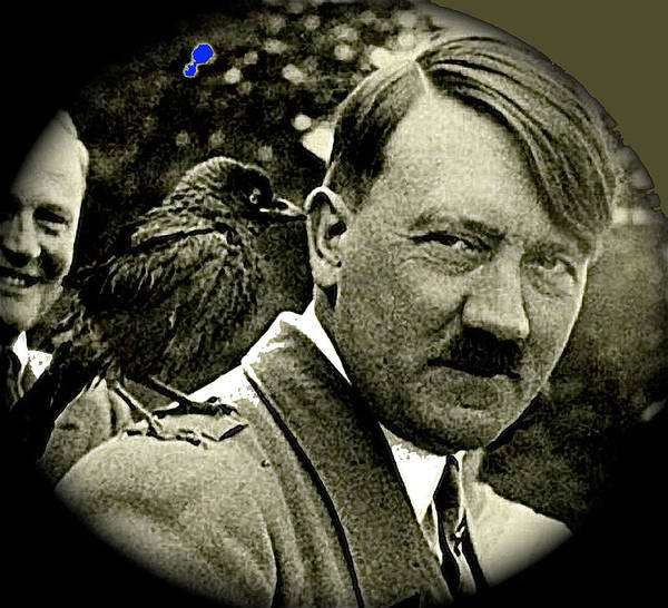 Adolf Hitler And A Feathered Friend C.1941-2008 Poster