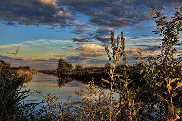 Late Afternoon In The Mead Wildlife Area Poster