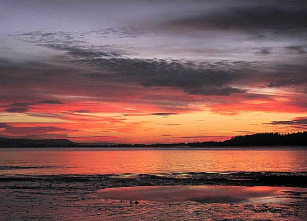 Alluring Sunset Poster