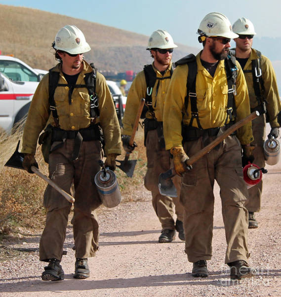 Alpine Hotshots Prepare To Ignite Cold Brook Prescribed Fire Poster