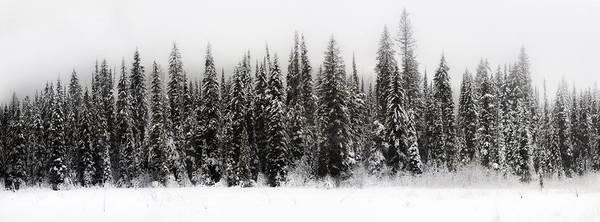Winter Scene // Whitefish, Montana  Poster