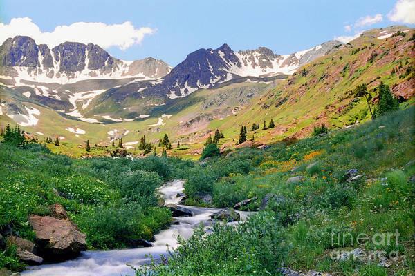 Alpine Vista With Wildflowers Poster