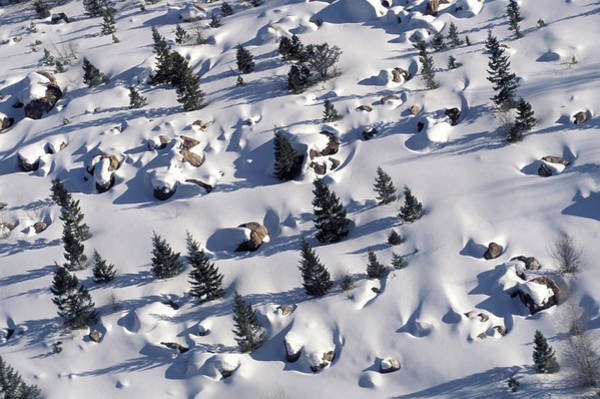An Aerial View Of A Snowy Meadow Poster