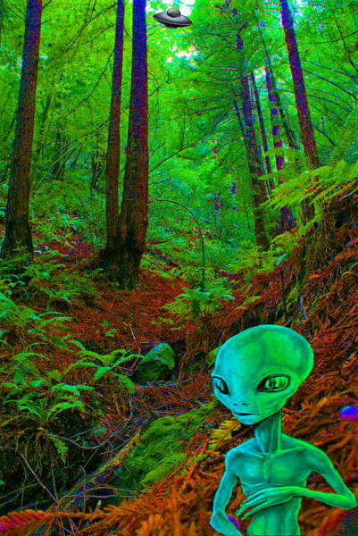 An Alien In A Cosmic Forest Of Time Poster