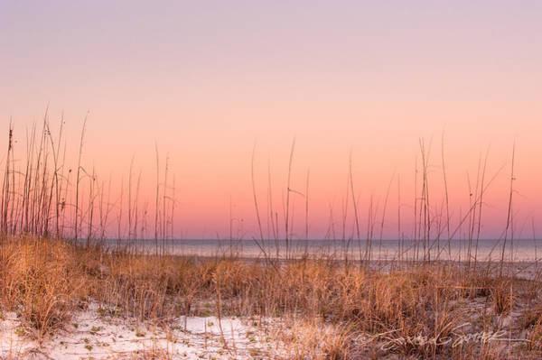 Anastasia Beach Dunes Sunset Poster