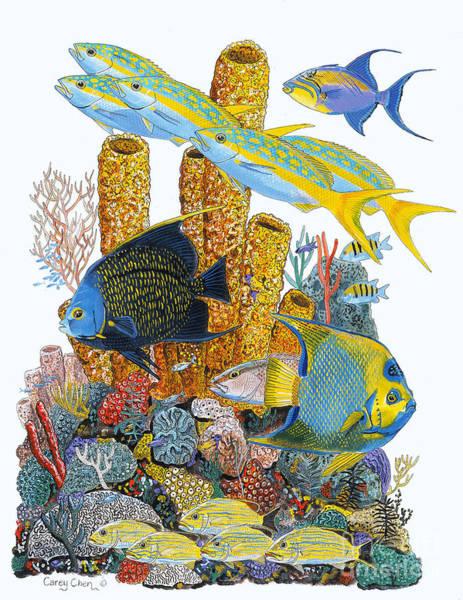 Angel Fish Reef Poster
