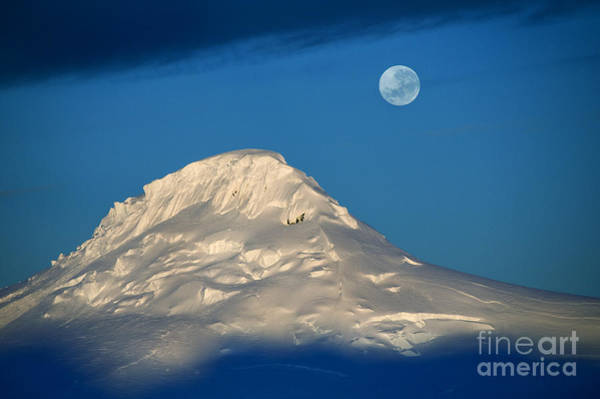Antarctic Moon Poster