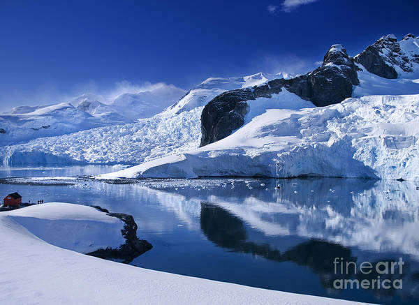 Antarctic Paradise Poster