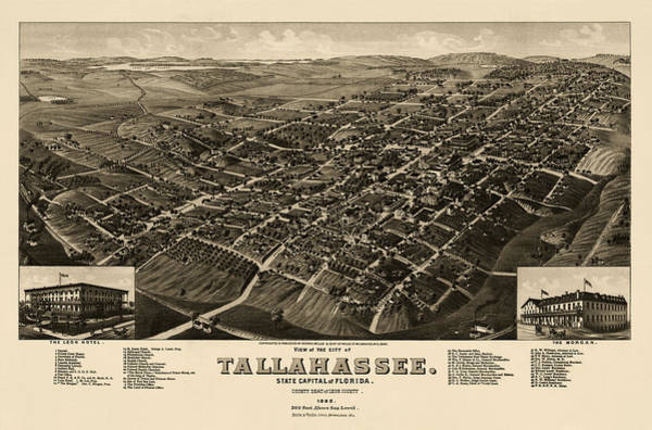 Antique Map Of Tallahassee Florida By H. Wellge - 1885 Poster