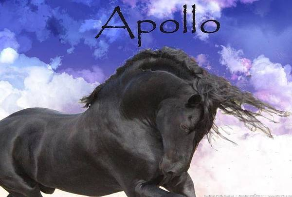 Apollo The Great Poster