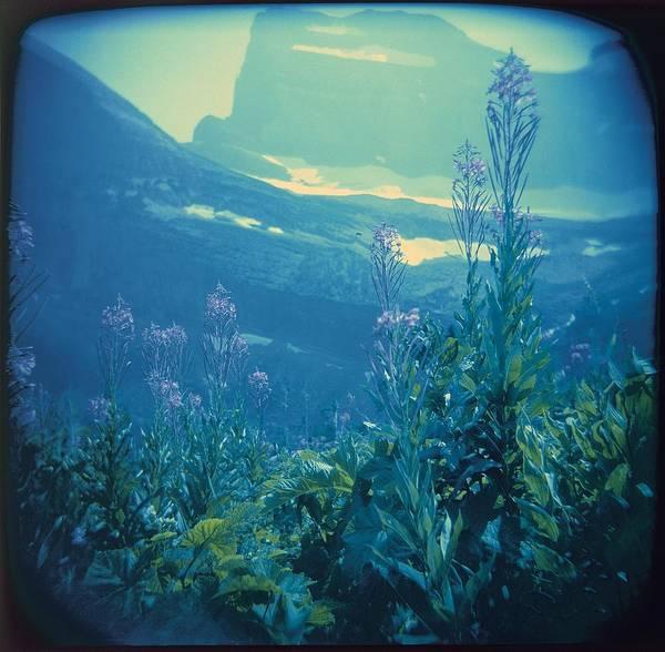 Aquarium Mountain Poster