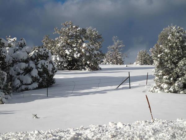 Arizona Snow 3 Poster
