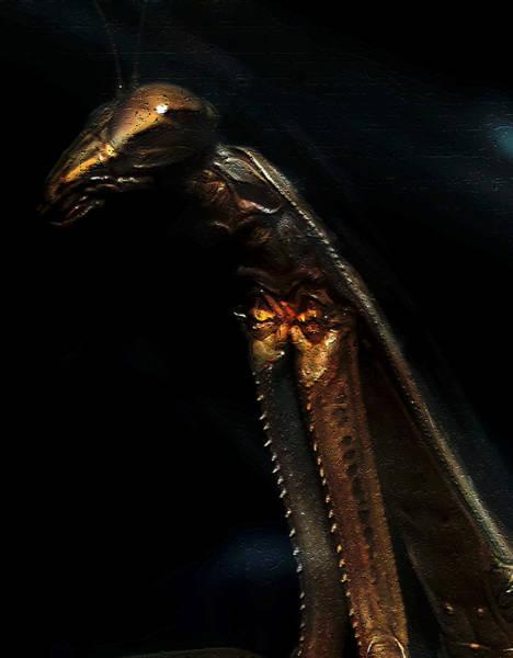 Armored Praying Mantis Poster