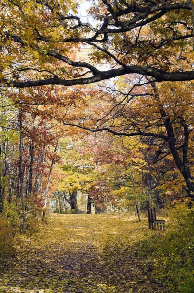 Autumn Pedestrian Path Poster