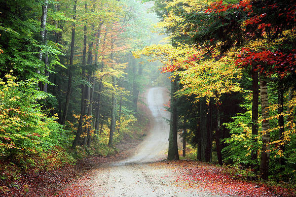 Autumn Road In Rural New Hampshire Poster
