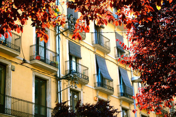 Poster featuring the photograph Autumn Spain by HweeYen Ong