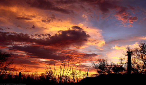 Az Monsoon Sunset Poster