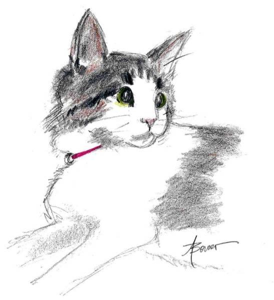 Baby Kitten Poster