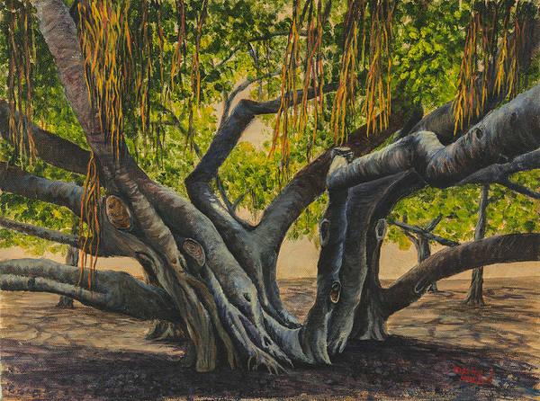 Banyan Tree Maui Poster